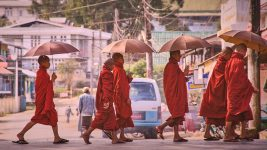 Image: Young monks wearing orange robes crossing the road with umbrellas