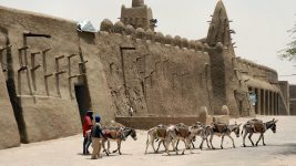 Image: Men walking with donkeys in front of a building in Kimbuktu