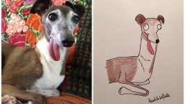 Image: side by side shot of someone's pet with tongue hanging out and their funny portrait!