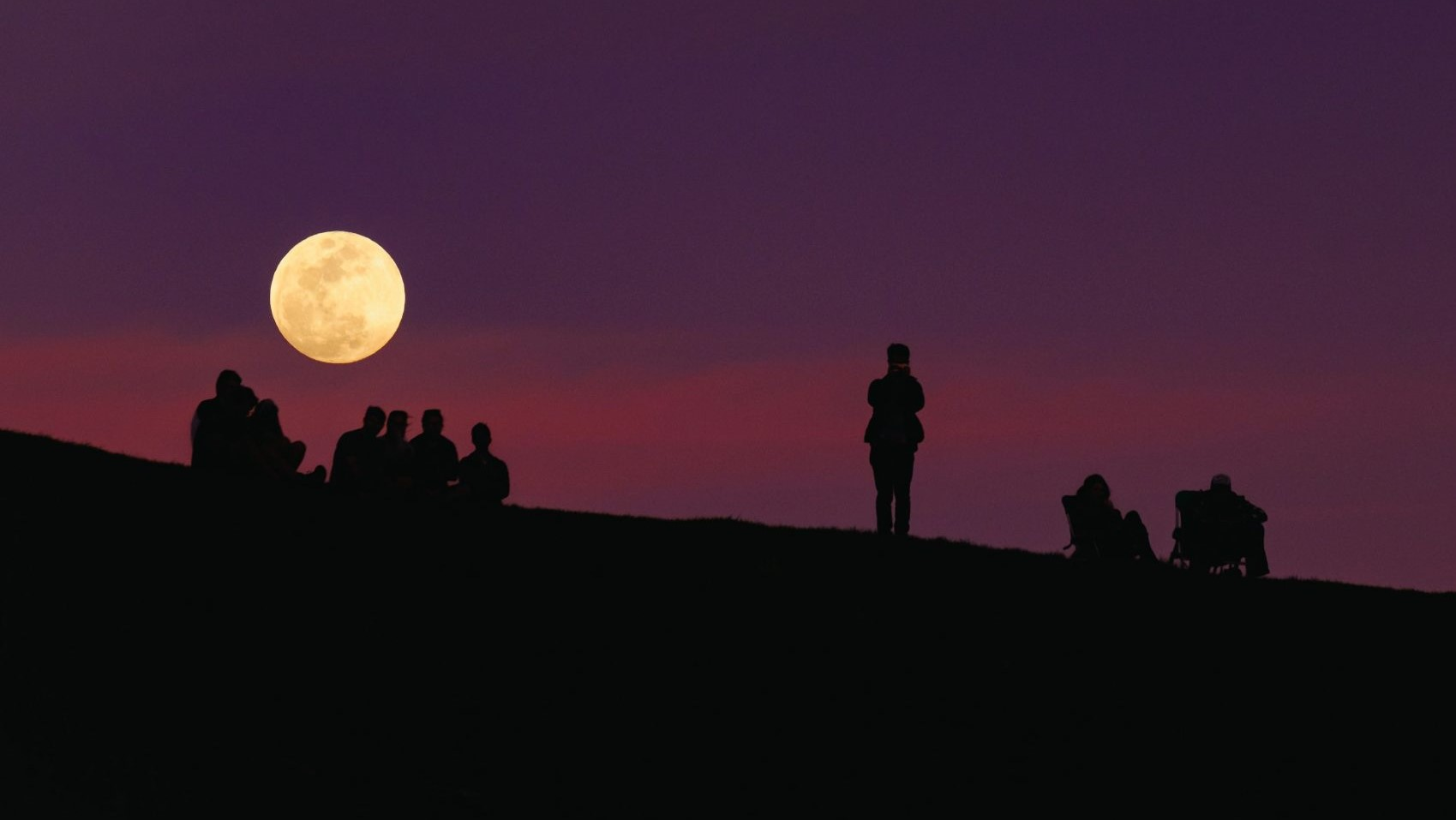 Image: people looking up at the moon