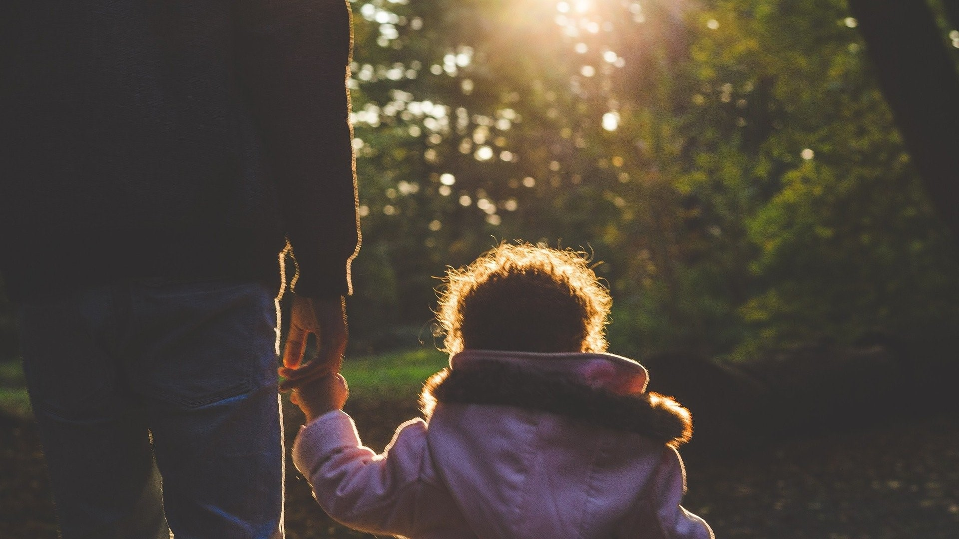 Image: child holding an adults hand, walking away from the camera into the woods towards the sun