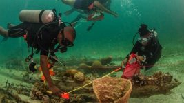 Image: Diving with a purpose divers surveying a ship wreck