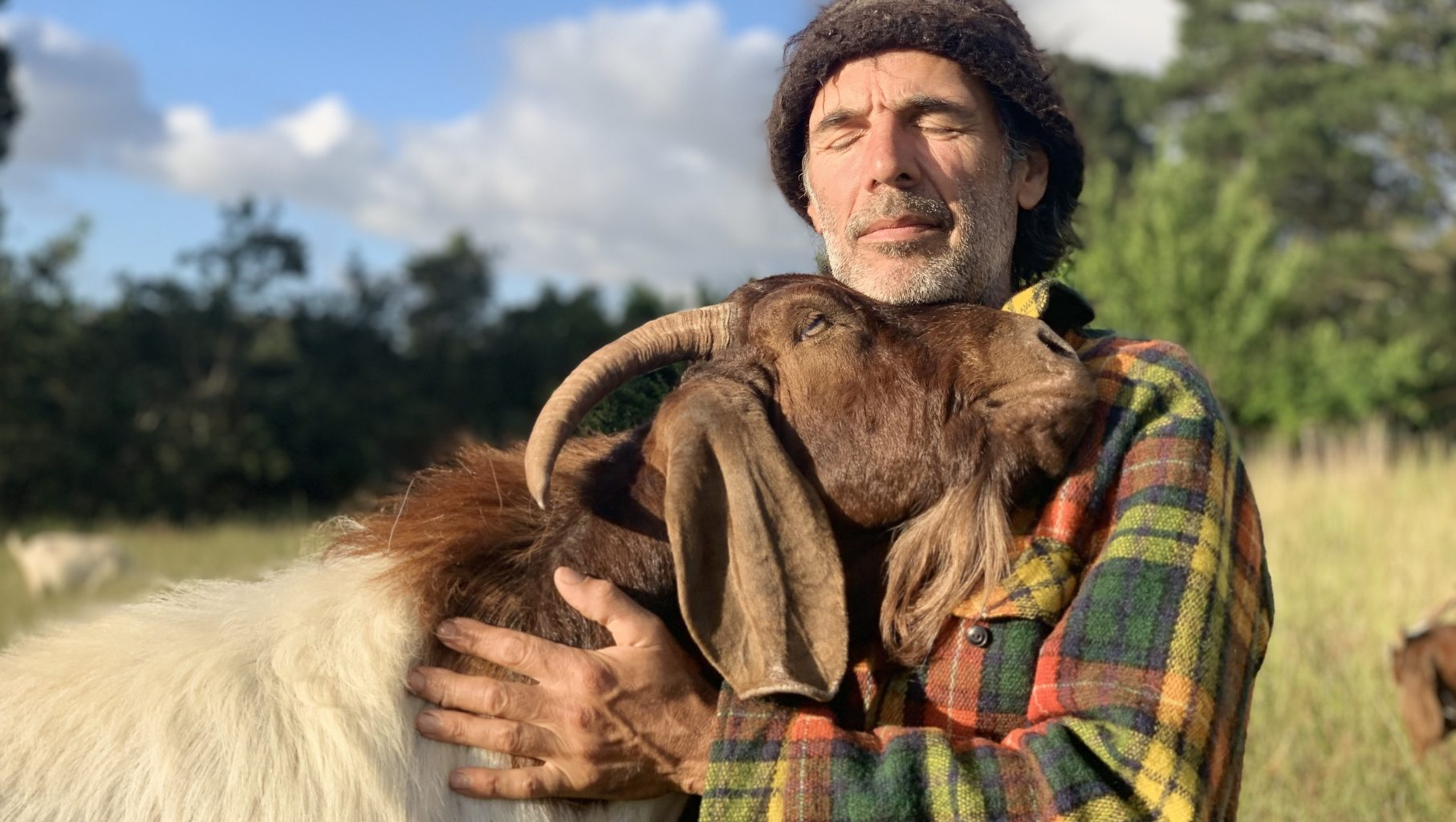 Image: Person hugging goat