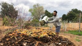 Image: Person throwing food waste onto a compost pile