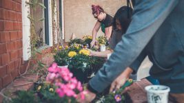 Image: Individuals tending to flowers in a community planter.