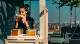 Image: Woman in black long sleeves sniffing honey from an urban beehive