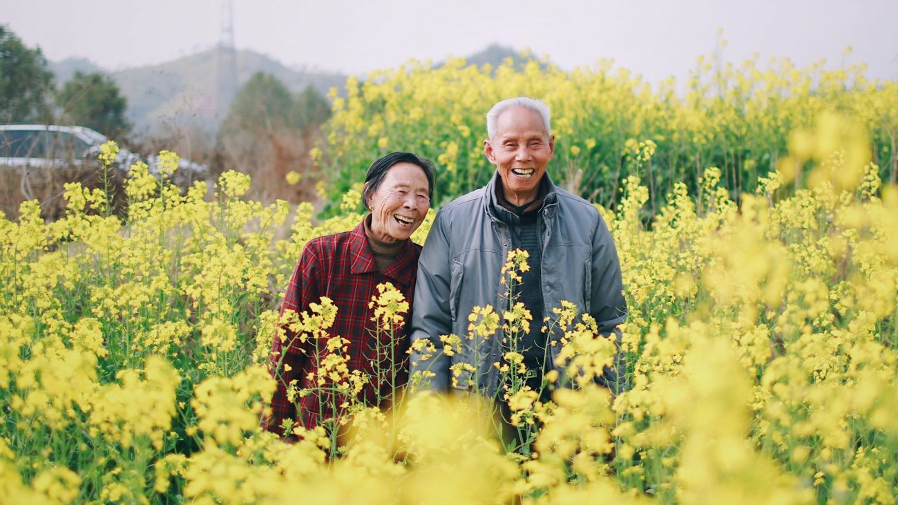 Image: A senior couple standing in a field of yellow flowers, smiling at the camera.