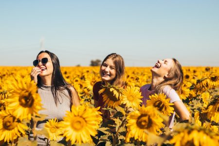 Image: Three women laughing in a field of sunflowers